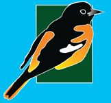 Birdathon Logo